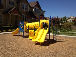 Playground Safety Audit